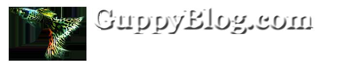 GuppyBlog.com